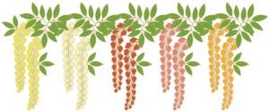 藤の花 赤橙黄白
