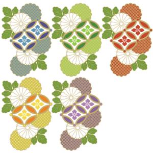 菊の花10